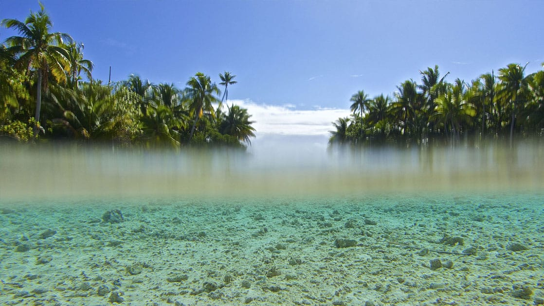 looking at water level in the pacific islands seeing both underwater at the sea floor as well as above water with 2 islands full of palm trees and sunny skies
