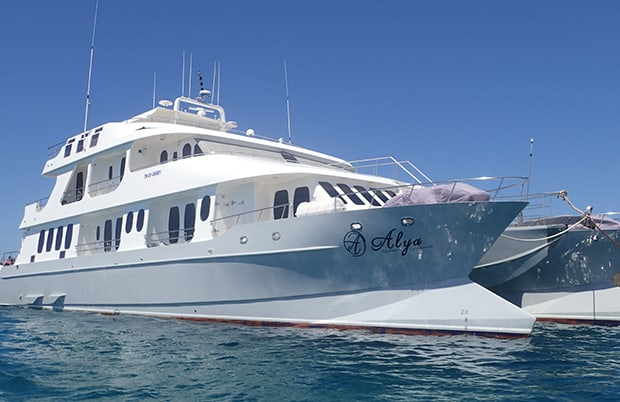 Close up view of the small ship cruise catamaran Alya anchored in the ocean of the Galapagos.