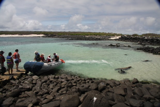 Group of people getting onto a panga from shore to head back to the small ship.