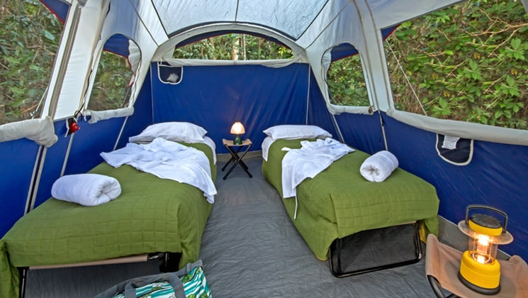 Two cots set up with a night table and lamp in the middle of a big glamping tent with several windows in the amazon