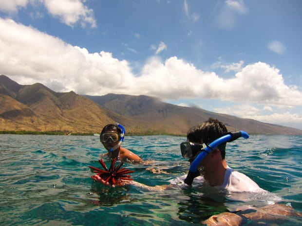 Snorkeling excursion on a small ship cruise in Hawaii.