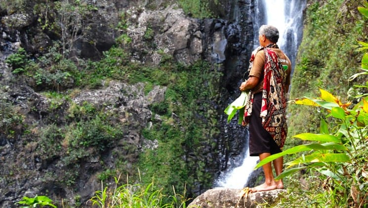 an elderly indigenous hawaiian man stands on a jungle ledge looking at a waterfall in the distance