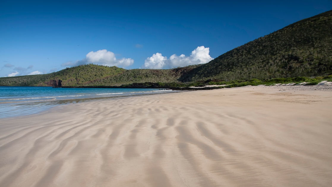 Empty white sand beach and turquoise waters in the Galapagos Islands.