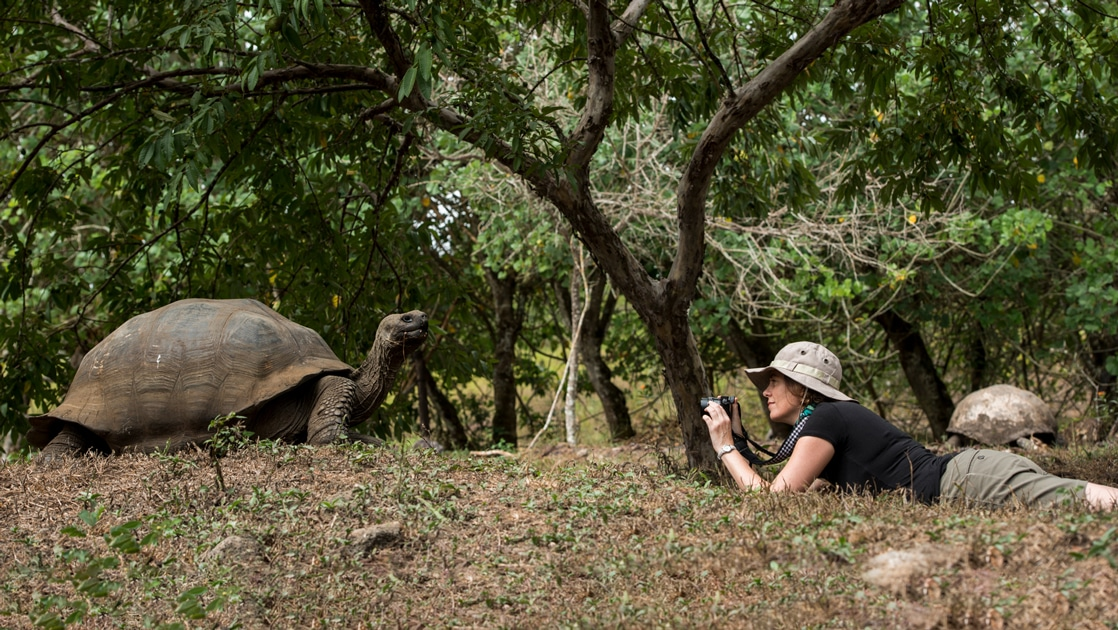 A traveler wearing a tan safari hat lays on the ground with camera in hand for a photo of the giant Galapagos tortoise in front of her.