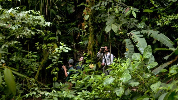 hikers with binoculars explore the jungle on mashpi rainforest tour in ecuador