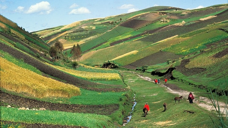 andes highlands with patchwork crops on otavalo escape ecuador land tour