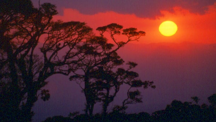 purple hues at sunset on pacific costa rica land tour