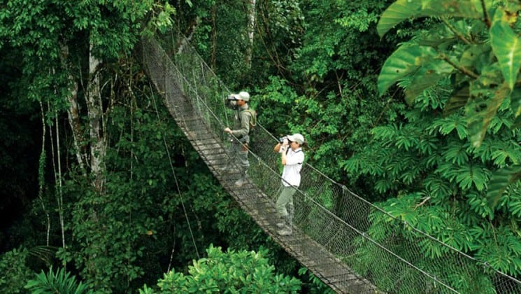 adventure travelers standing on an amazon jungle bridge taking pictures