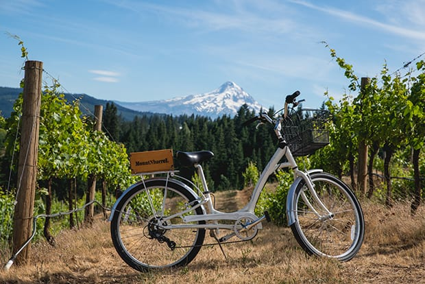Romantic biking and winery excursion from a small ship river cruise in the Pacific Northwest.