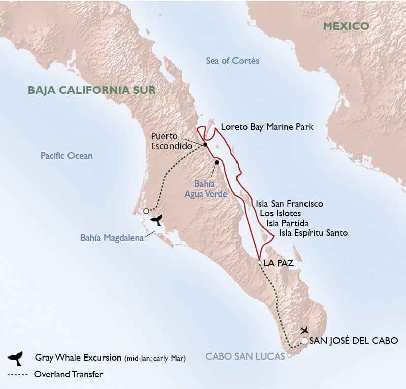 Route map of Baja's Bounty small ship cruise, operating round-trip from San Jose Del Cabo, with visits to La Paz, Gulf of California Biosphere Reserve, Bahía Agua Verde, Isla San Francisco, Los Islotes, Isla Partida & Espíritu Santo.