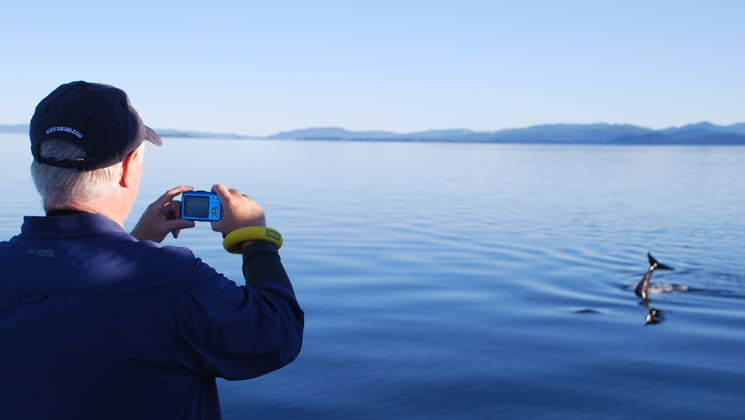 traveler takes a picture from the bow of an alaska small ship at a whale tail sticking out of the water