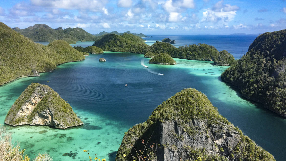 looking down at an indonesia archipelago scattered around turquoise water with a small ship traveling in the distance on the Spice Islands and Raja Ampat cruise