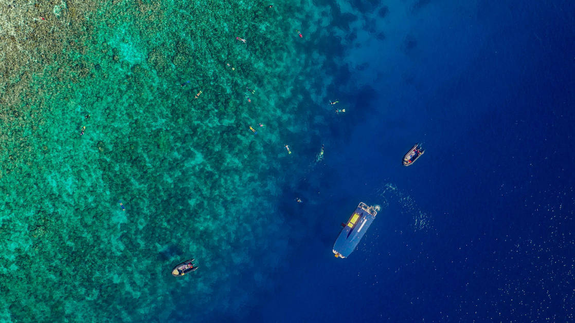 Aerial view of snorkelers over deep blue ocean waters and emerald coral reef during the Spice Islands & Raja Ampat small ship cruise in Indonesia.