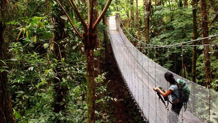 woman on suspension bridge on tropical volcano & cloud forest land tour in costa rica