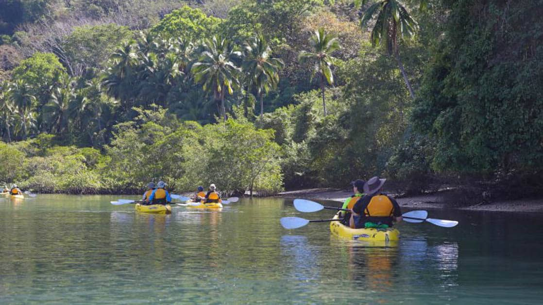costa rica small ship cruise travelers on a kayak excursion down a river with the jungle on the side of them