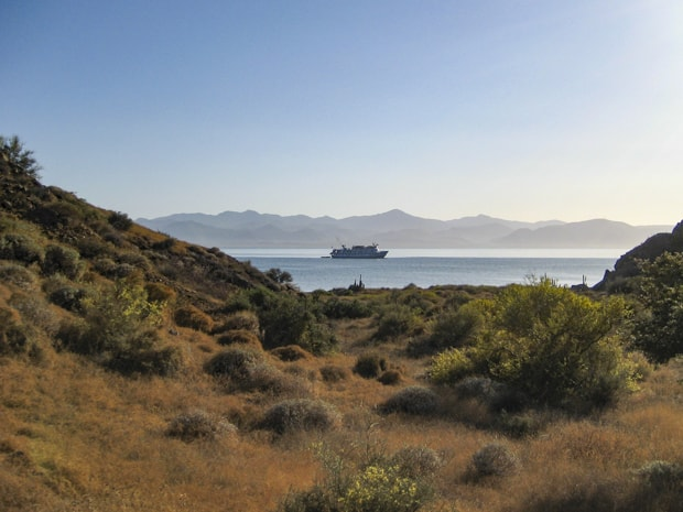 View of a dry grassy island with a Baja small ship cruise floating on the ocean with mountains in the background.
