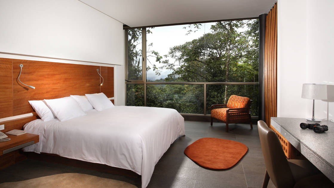 Mashpi Wayra room with king bed and floor to ceiling windows.