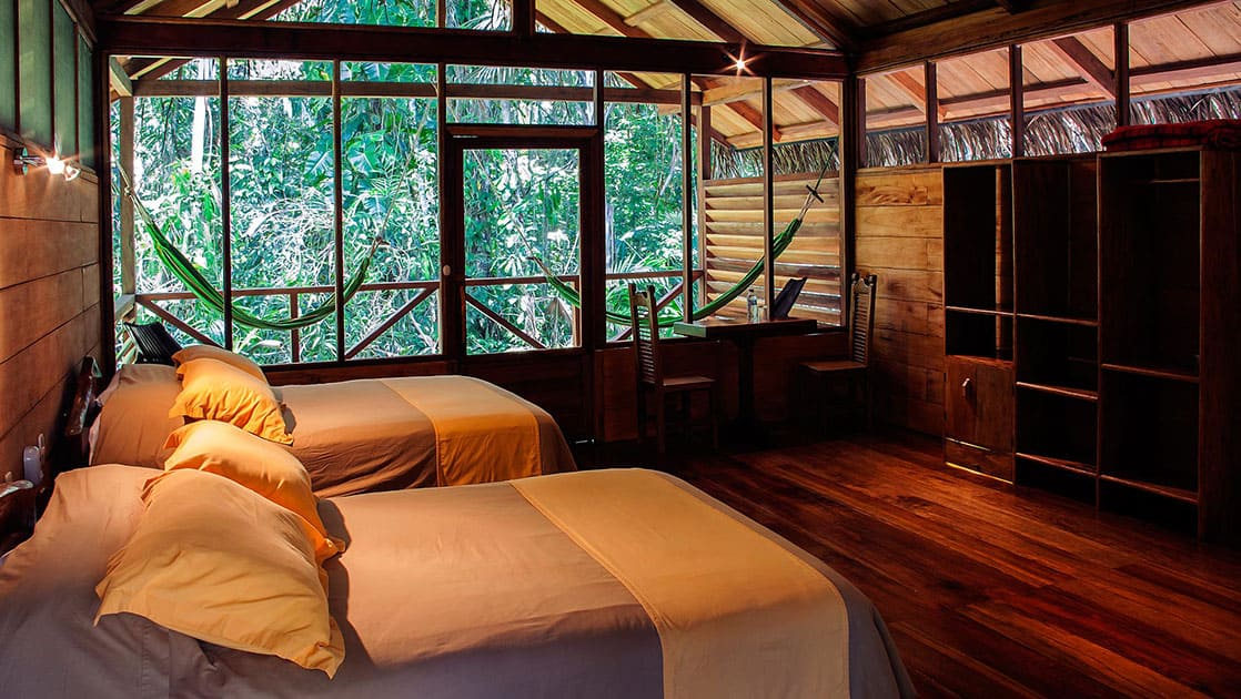 Sacha Lodge room with two twin beds with large windows.