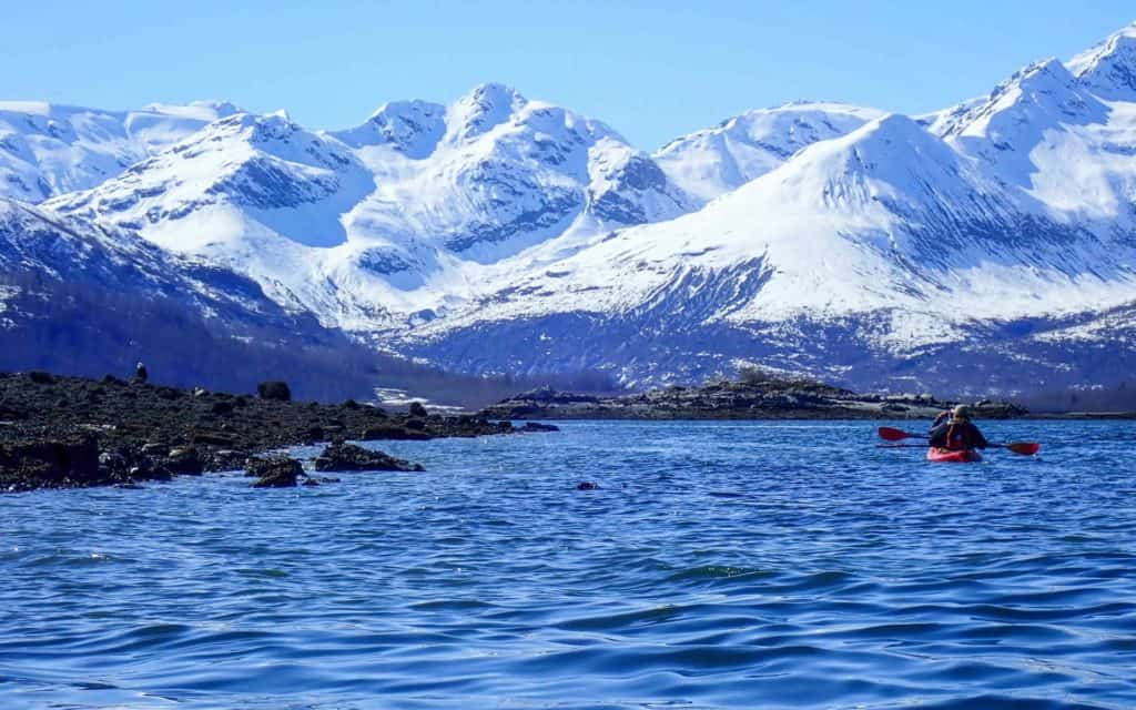 Two Alaska travelers kayaking and looking at a bald eagle perched on the beach with snowy mountains in the background.
