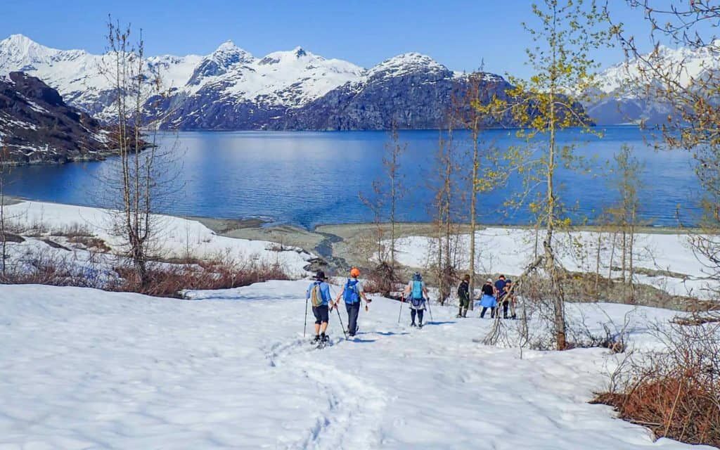 A group of Alaska travelers snowshoeing down a snowy hill with Glacier Bay below them and snow capped peaks across the bay.