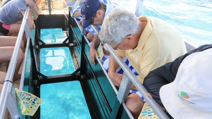 travelers lean over a railing looking through the window of a glass bottom boat during the great barrier reef australia cruise