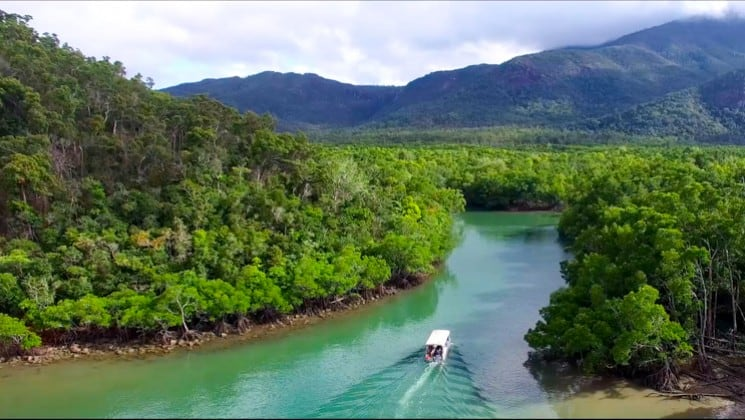 skiff taking people down a quiet river with jungle on either side during the great barrier reef australia cruise