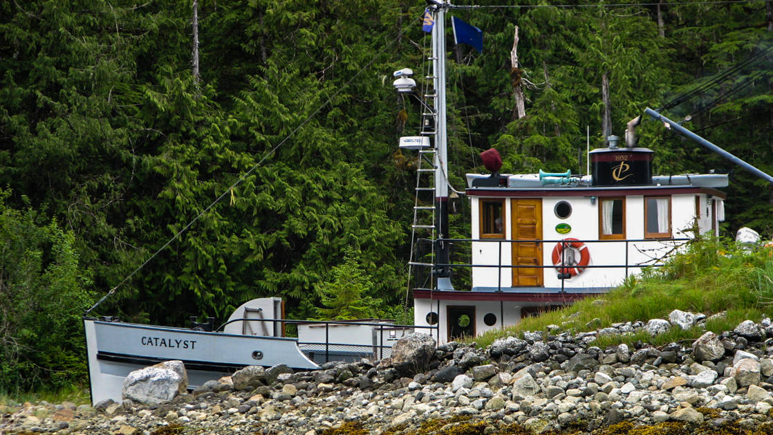Historic motor vessel Catalyst tucked into an inlet beside lush green forest in Alaska.