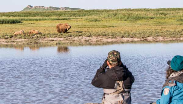 Two travelers with binoculars look over a river at brown bear with two cubs in the grass at Katmai National Park