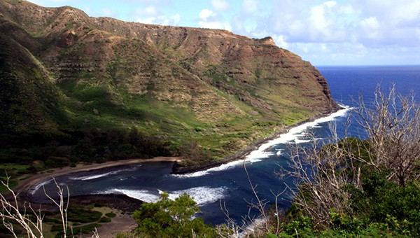 Coastline view of the Hawaii island of Maui with brush in foreground and waves curving along the shore of green hills