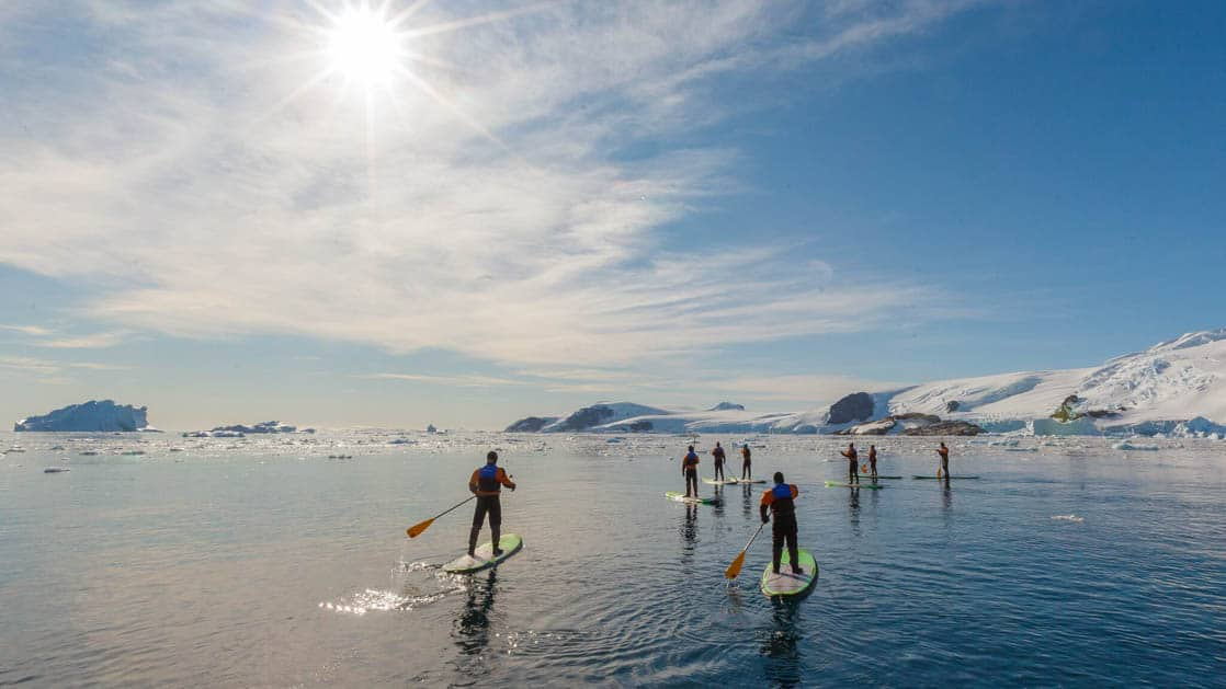 A group of people paddle stand-up boards on calm waters in the ocean in antarctica