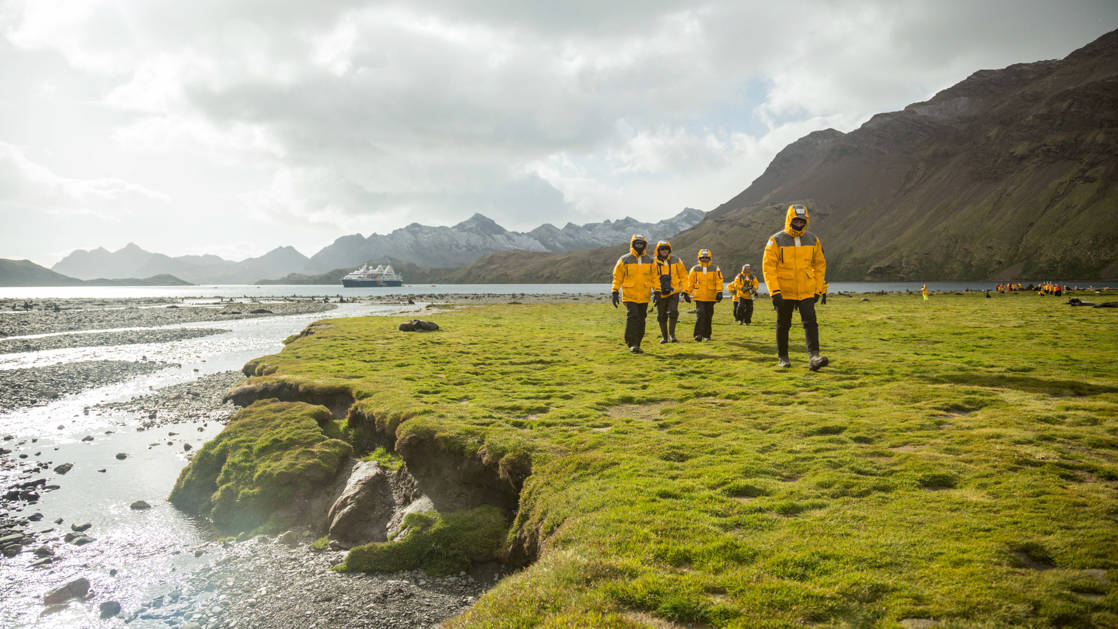 Antarctica small ship expedition travelers walk along bright green grass beside the water on a partially sunny day.