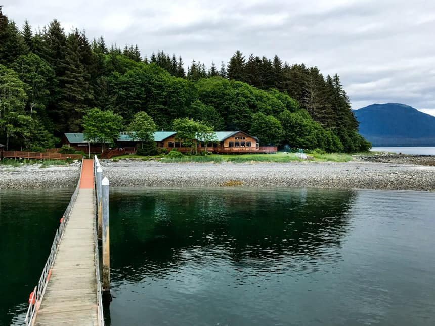 dock over water leading to dense green forest with orca point lodge in front in southeast alaska
