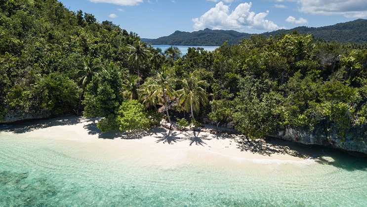 A secluded white-sand beach with emerald water and thick green forest on a sunny day; part of the Aqua Blu Raja Ampat Cruise in Indonesia.