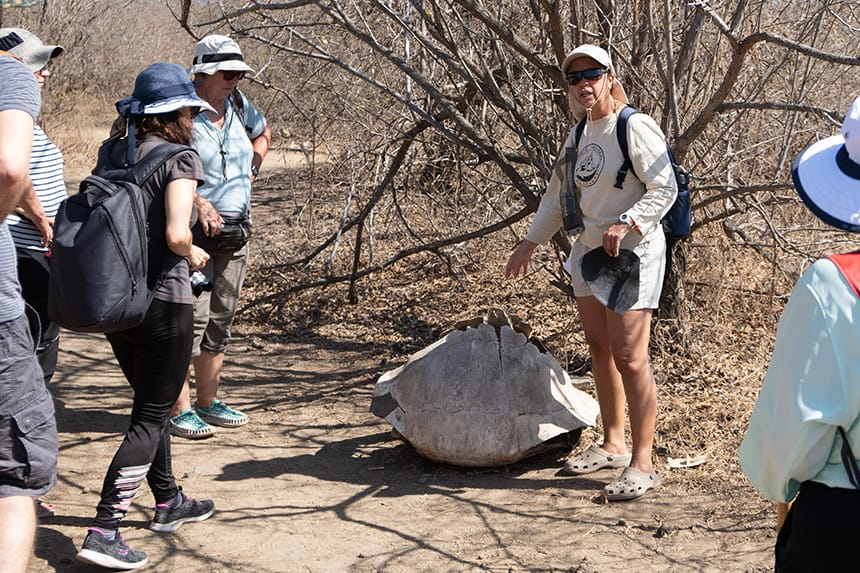 A group of travelers on a barren island landscape circled around a Galapagos naturalist guide listening to her discussion about an empty tortoise shell