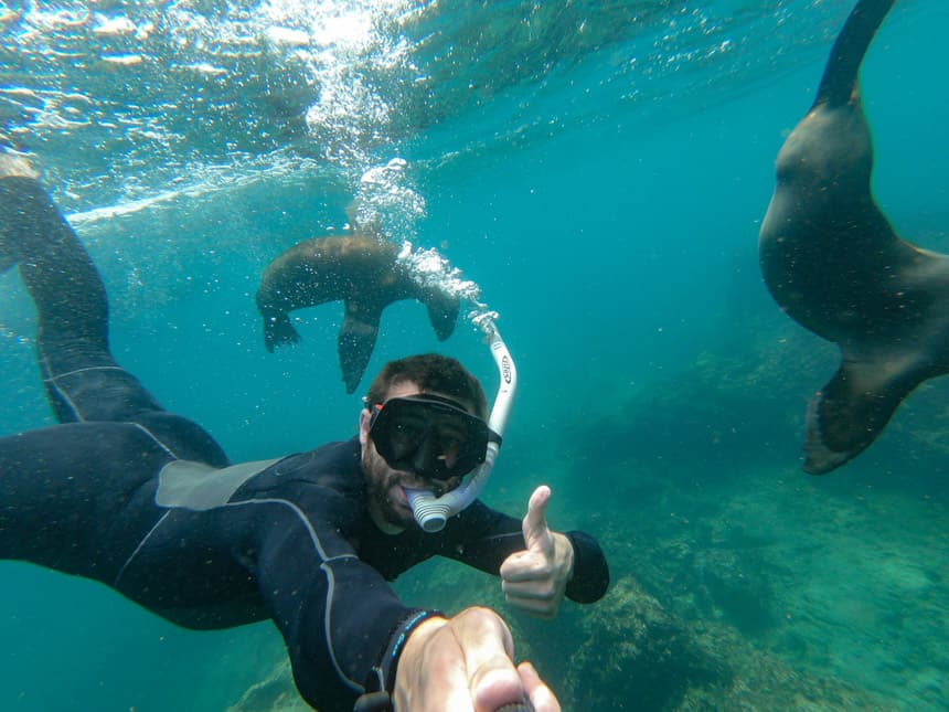 Snorkeler underwater taking a photo of himself and two sea lions swimming underwater