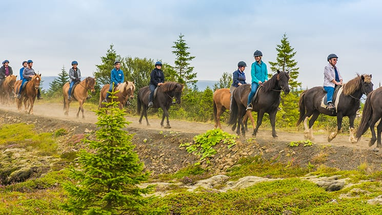 A group of travelers forms a line while riding on horseback among green fields during the Wild Iceland Escape arctic cruise.