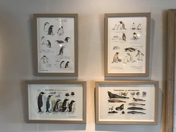 artwork and decor hanging from the wall inside a hallway of hebridean sky polar expedition ship