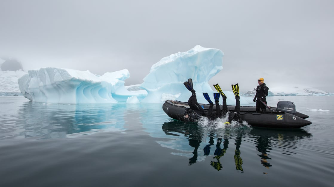 3 polar snorkelers launch backwards off the side of a Zodiac sitting in glassy water on a cloudy day during the Spirit of Antarctica expedition.