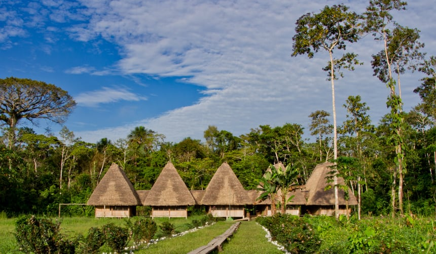 A row of bamboo and thatch cabanas sit amongst lush green lungle in the Ecuadorian Amazon at the Napo Wildlife Center