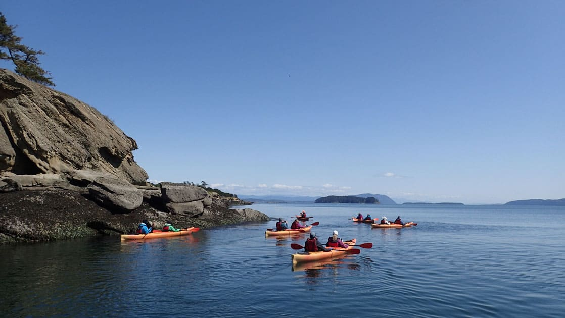 Kayakers paddling calm blue water on a clear day during the Salish Sea & San Juan Islands Adventure Cruise.