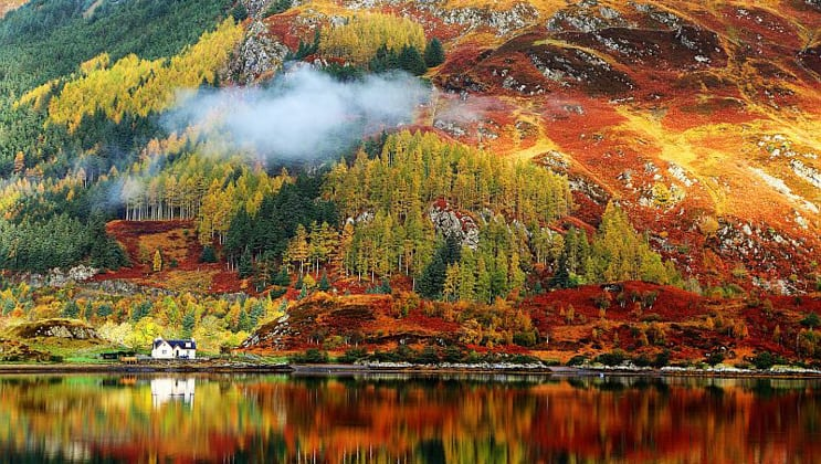 Fall colors of red, green & gold on a Scottish hillside seen during the Classic Scotland Barge Cruise.