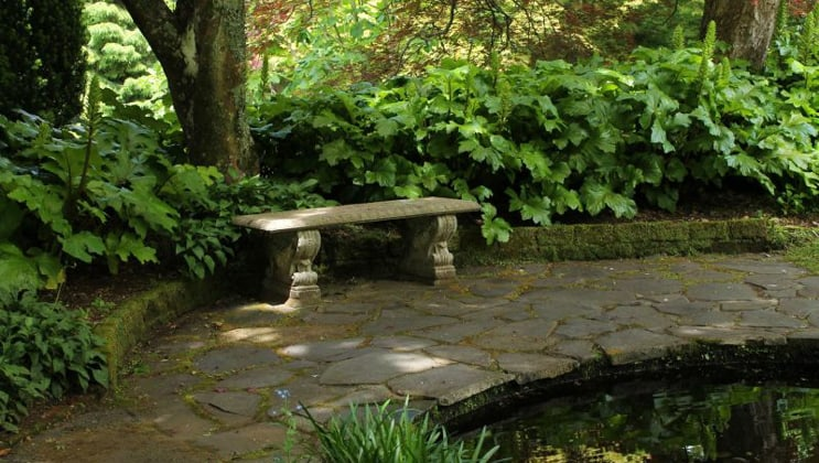 A stone bench & walkway surrounded by green ferns in a secret garden at Highclere Castle, seen during the Classic England Including Downton Abbey Cruise.