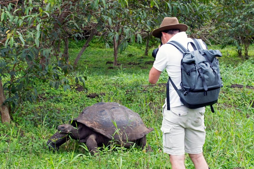 In the lush green highlands of santa cruz Island a traveler stands in a back pack and hat with a camera to his eye, taking a photo of the Galapagos Giant tortoise on the ground before him