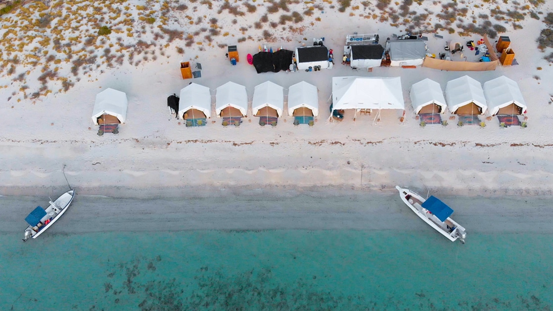 A oceanfront row of Luxury glamping tent at Camp Cecil on Isla Espritu Santo in Baja, An aerial photo taken from above showing teal ocean with two boats floating at the shoreline of a white sand beach.