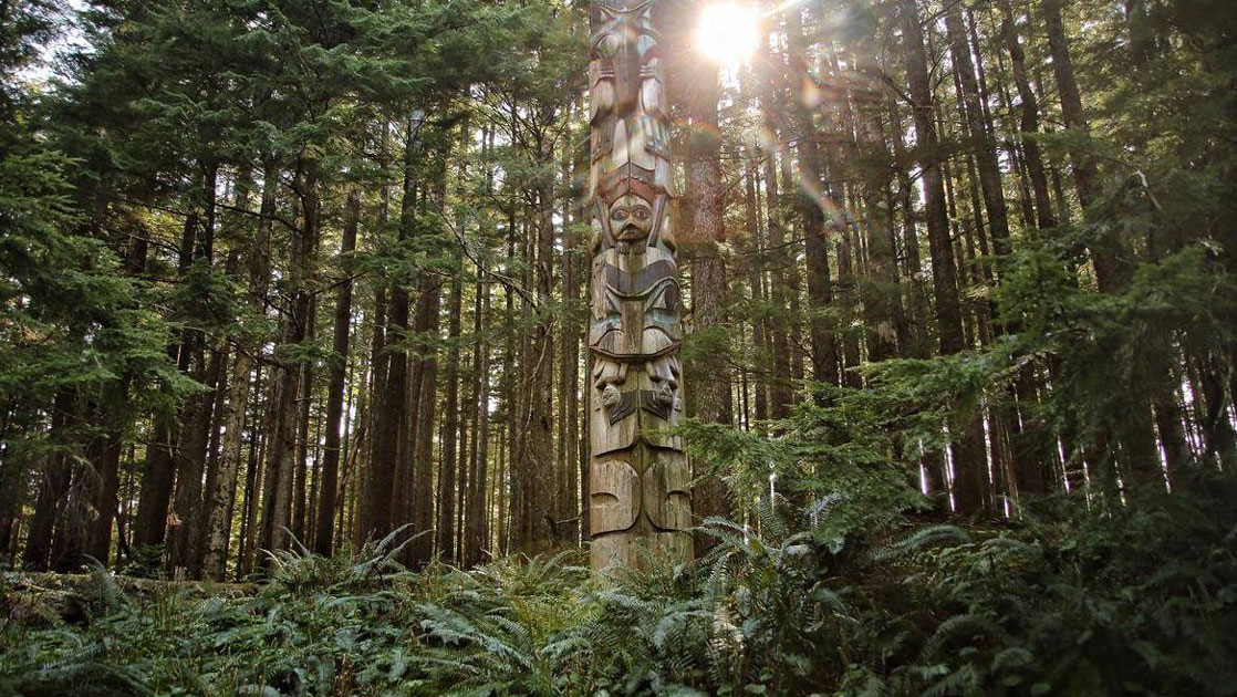 A totem pole stands in the dense green forest, seen during a Gulf of Alaska cruise.