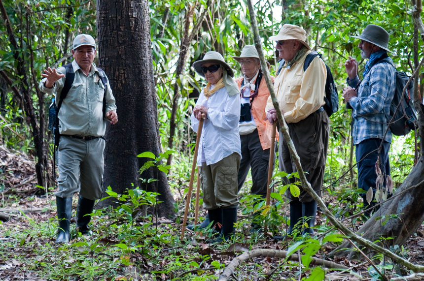 Amazon guide points out unique plant life on the jungle floor with guests looking on.