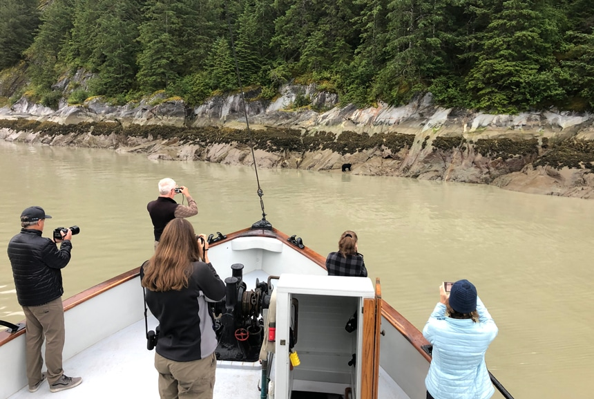5 cruise guests stand on the bow of the Catslyst small ship photographing a black bear on the shore line of granite rock