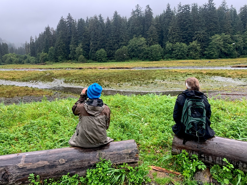 During a shore excursion In Alaska two women sit on logs looking out into a lush green Pack Creek watching brown bears hunt the creek for salmon