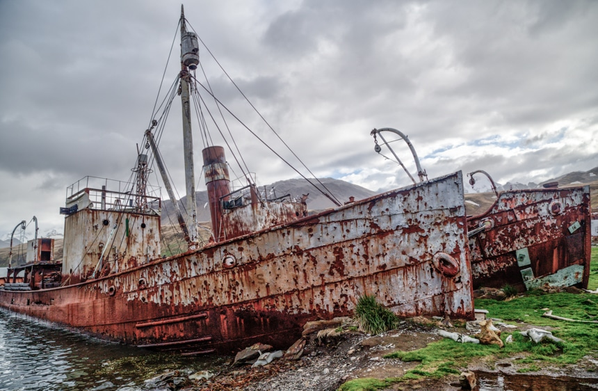 the bows of two old, rusted whaling ships stuck on the grass shore in grytviken, south georgia, antarctica