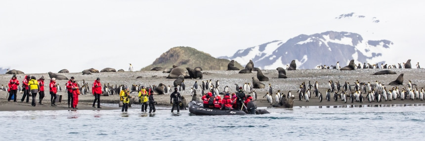 a group of people in a zodiak coming to shore while another group waits on the beach with penguins and fur seals close by